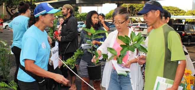 Oahu arbor day fun